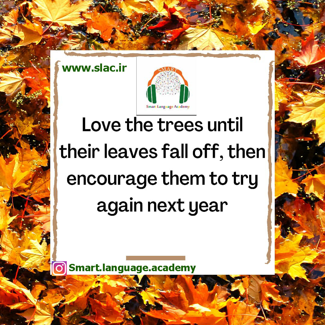 Love the trees until their leaves fall off,then encourage them to try again next year